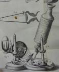 hooke-micrographia-1